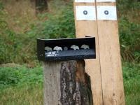 Střelecký areál u chaty v Hlavici