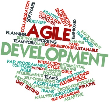 Agile software development (zdroj: http://www.dolphinconsulting.cz/)
